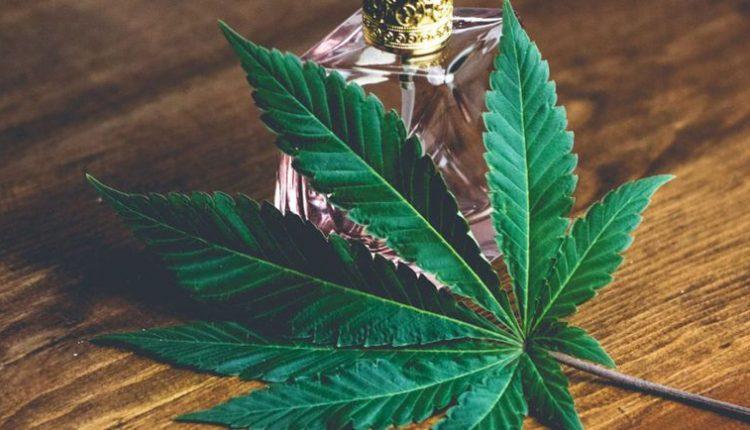 Cannabis Terpenes Work