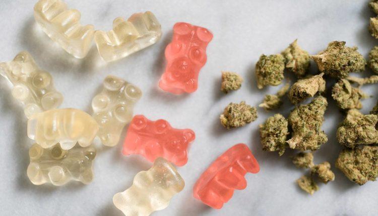 Cannabis Edibles1
