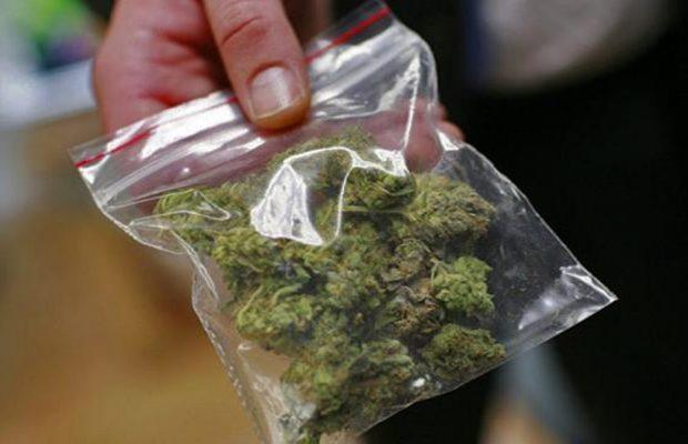 purchase cannabis
