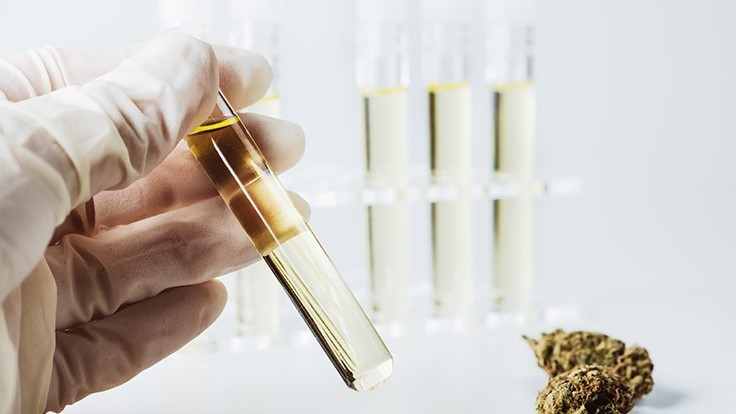 Cannabis Products Tested